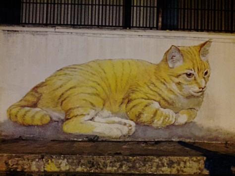 CatWallMural