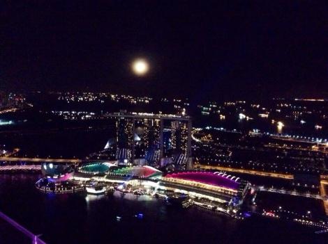 Singapore nights