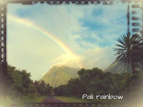 Pali Rainbow